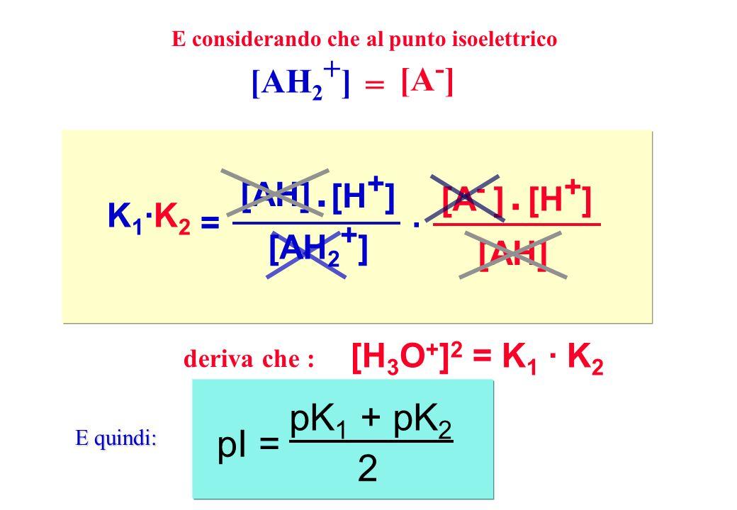 . . pK1 + pK2 pI = 2 = [AH2+] [A-] [AH] [H+] [AH2+] [A- ] [H+] [AH]